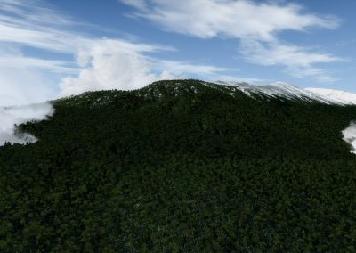 Hawaii autogen vegetation (BETA) for FSX and Prepar3D... ready! 7